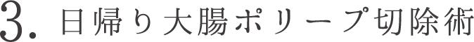 3. 日帰り大腸ポリープ切除術